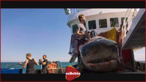 دانلود فیلم deep blue sea 3 با لینک مستقیم