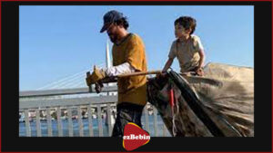 دانلود فیلم سینمایی زندگی کاغذی دوبله فارسی
