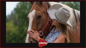 دانلود رایگان فیلم اردوگاه اسب سواری: یک تعقیب عاشقانه