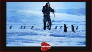 مستند سانسور نشده Penguins: Life on the Edge 2020
