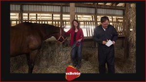 فیلم سانسور نشده Horse Camp: A Love Tail 2020