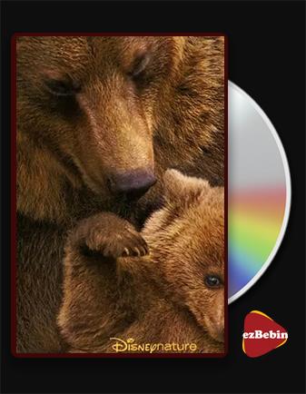 دانلود مستند خرس ها با دوبله فارسی مستند Bears 2014 با لینک مستقیم