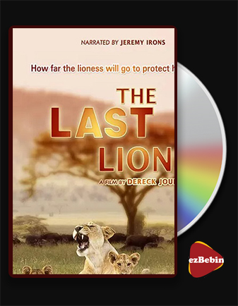 دانلود مستند آخرین شیرها با دوبله فارسی مستند The Last Lions 2011 با لینک مستقیم