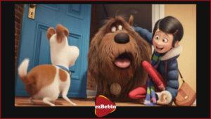 دانلود رایگان انیمیشن سینمایی دو سگ و یک روز
