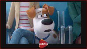دانلود رایگان انیمیشن سینمایی زندگی مخفی حیوانات خانگی ۲