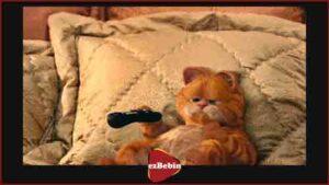 انیمه سانسور نشده Garfield: A Tail of Two Kitties 2006