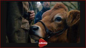 دانلود فیلم سینمایی اولین گاو با دوبله فارسی