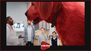 انیمیشن کلیفورد سگ بزرگ قرمز ۲۰۲۱ با کیفیت 1080p & 720p & 480p